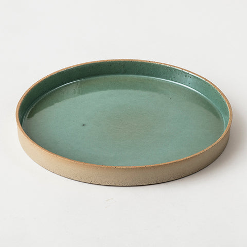 Dish with a colored base