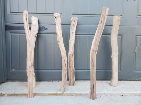 Manzanita Forest Logs Set of 6 Free Shipping
