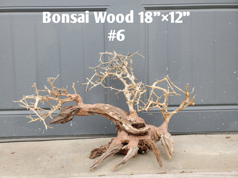 "Bonsai Driftwood 18"" #06 (Free Shipping)"