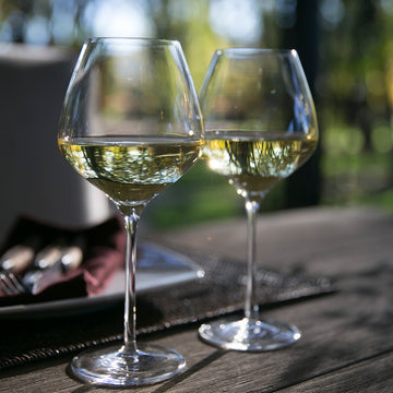 The One White Wine Glasses (2 Pack)