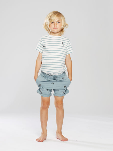 One T-shirt Stripe Kite