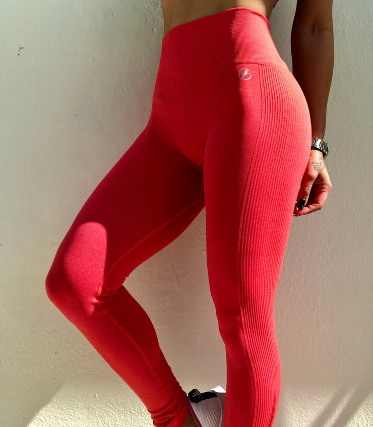 Not So Basic Seamless (All Colors) - ABS2B FITNESS APPAREL