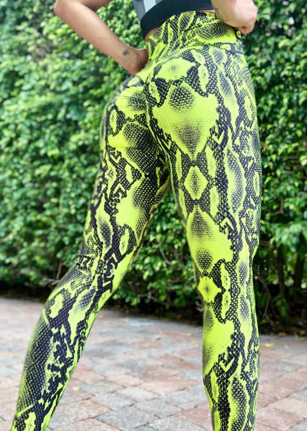 Neon Python - ABS2B FITNESS APPAREL