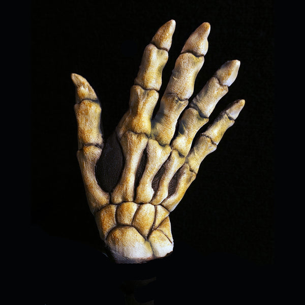 Skeleton Hand Backs