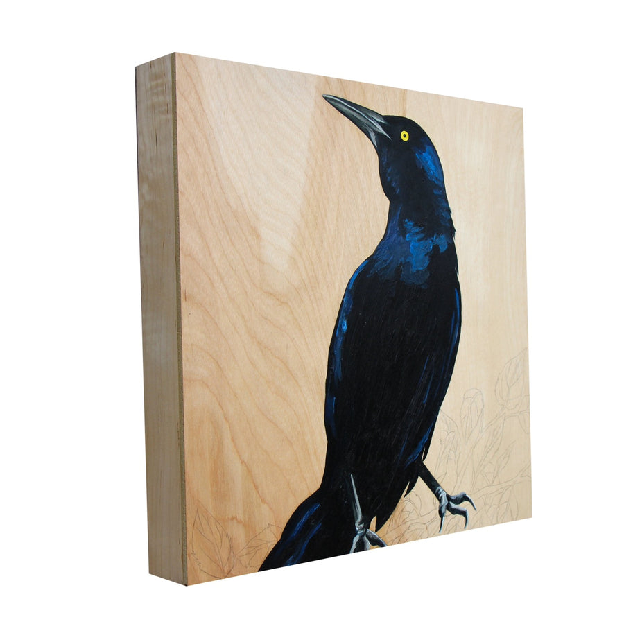 Grackle #32 - Carly Weaver - 12x12""