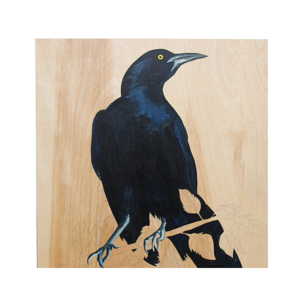 Grackle #35 - Carly Weaver - 12x12""