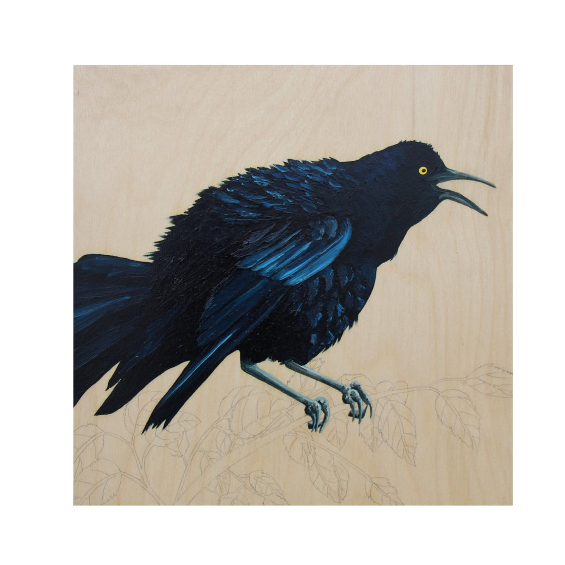 Grackle #40 - Carly Weaver - 12x12""