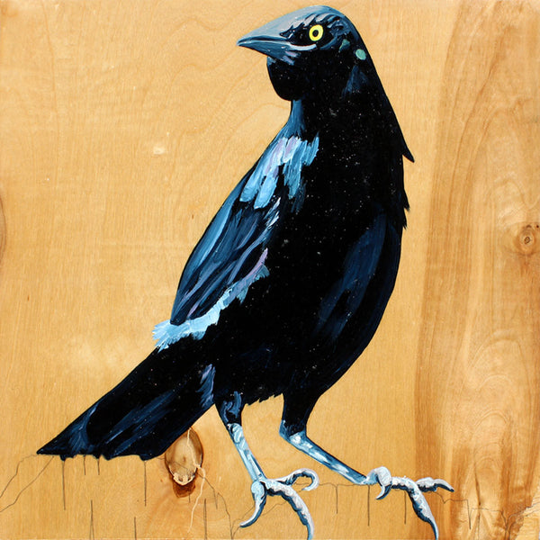 Grackle #2 - Carly Weaver - 12x12""