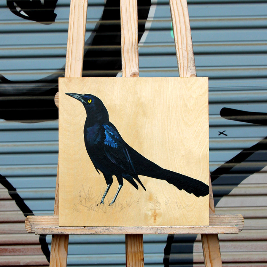 Grackle #33 - Carly Weaver - 12 x 12""
