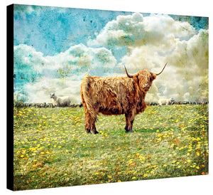 Highland Bull by Jake Bryer