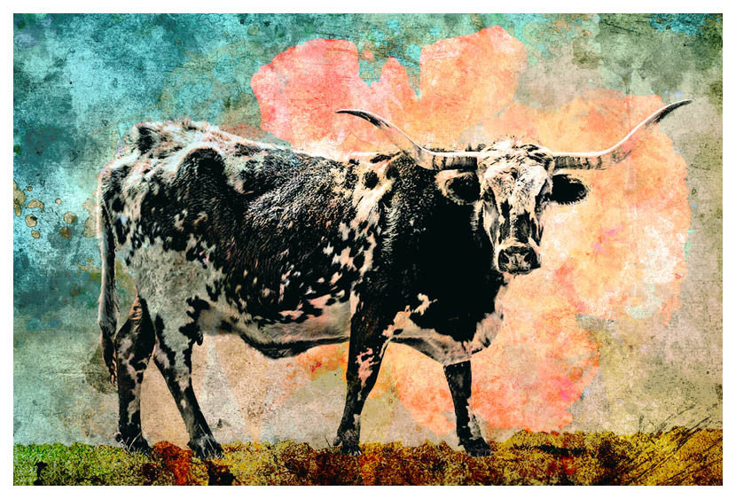 Longhorn - Jake Bryer