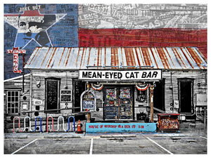 Mean Eyed Cat 2 - Jake Bryer
