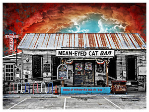Mean Eyed Cat by Jake Bryer