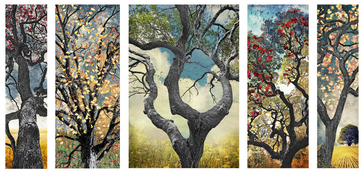 Texas Tree Series by Jake Bryer