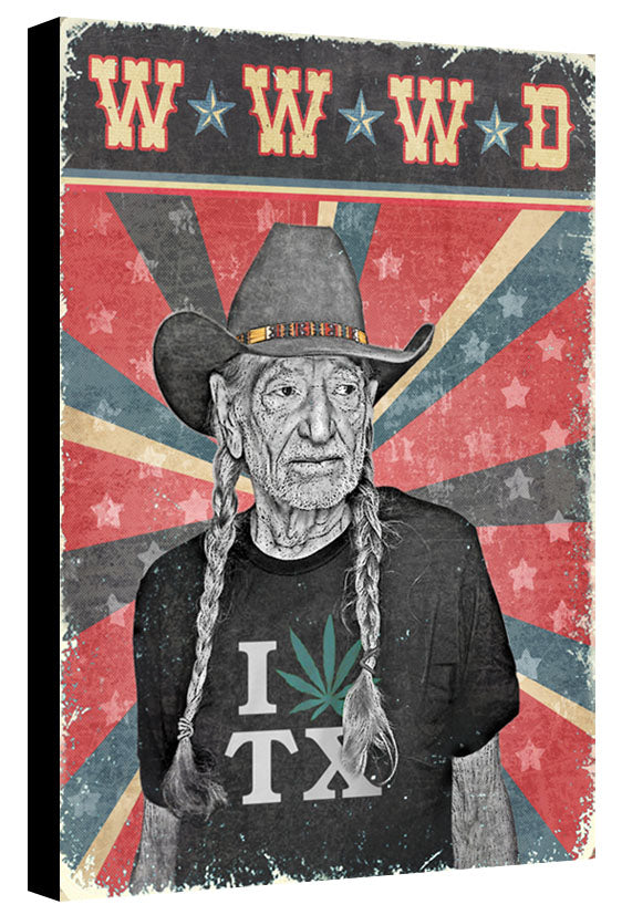 What Would Willie Do? by Jake Bryer
