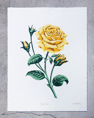 Yellow Rose (on cream) - Landry McMeans - 18x24""