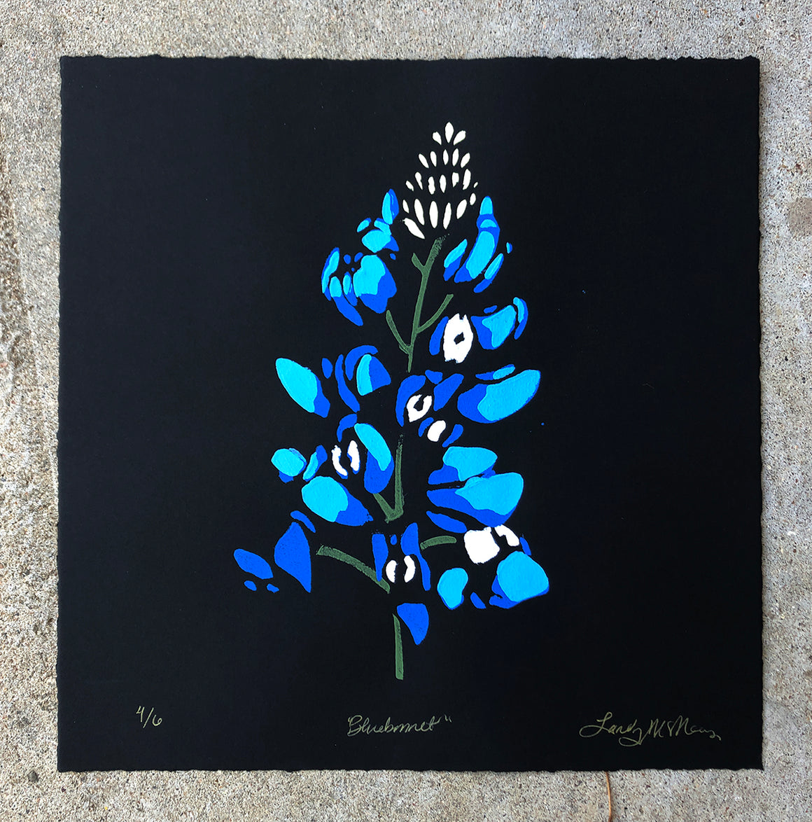Bluebonnet (on black) - Landry McMeans - 15x15""