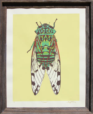 Cicada (on yellow) - Landry McMeans - 22x28""