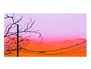 Crestview - Autumn Mae Crocker - 12x6""