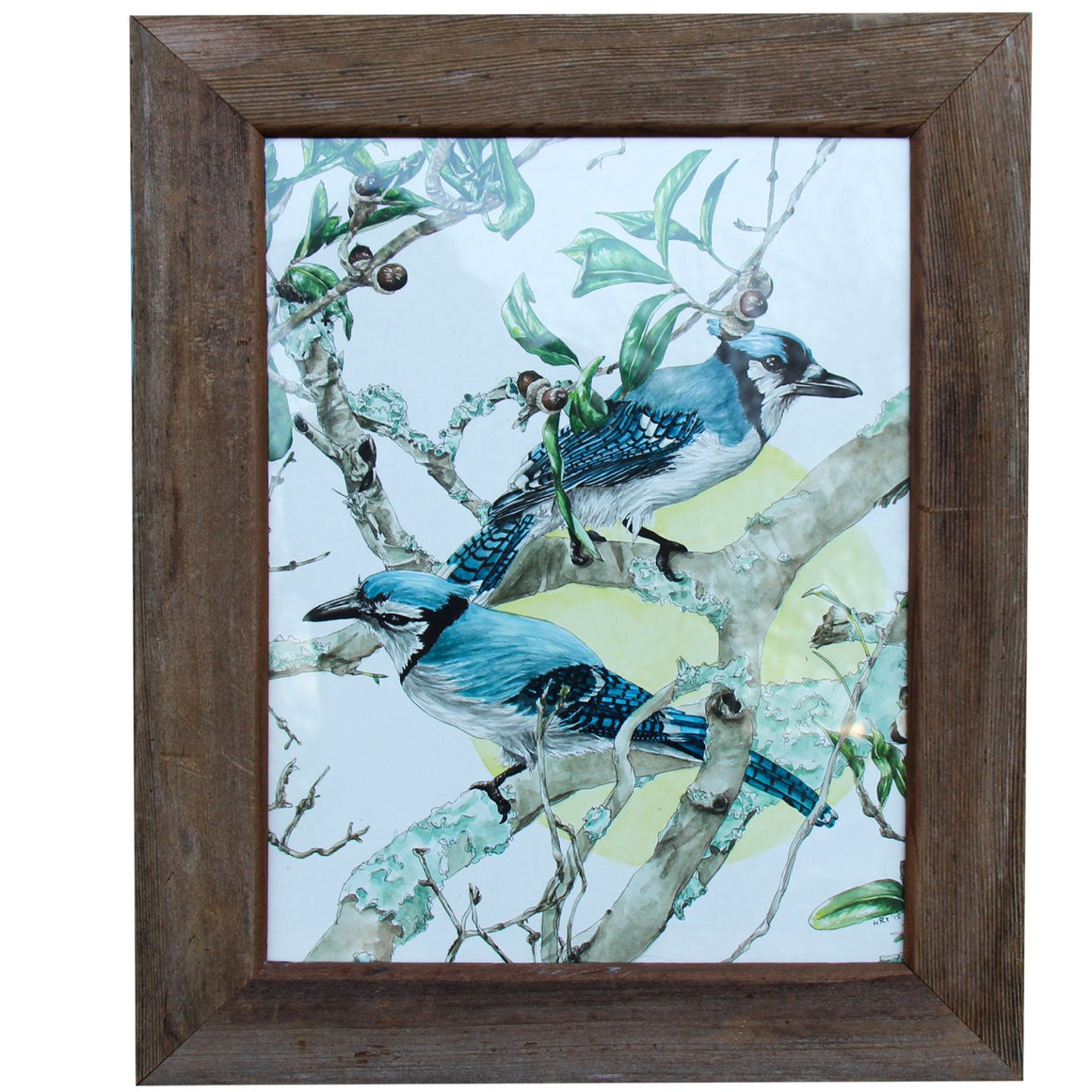 Jays in Live Oak - Hallie Rose Taylor - 11x14""