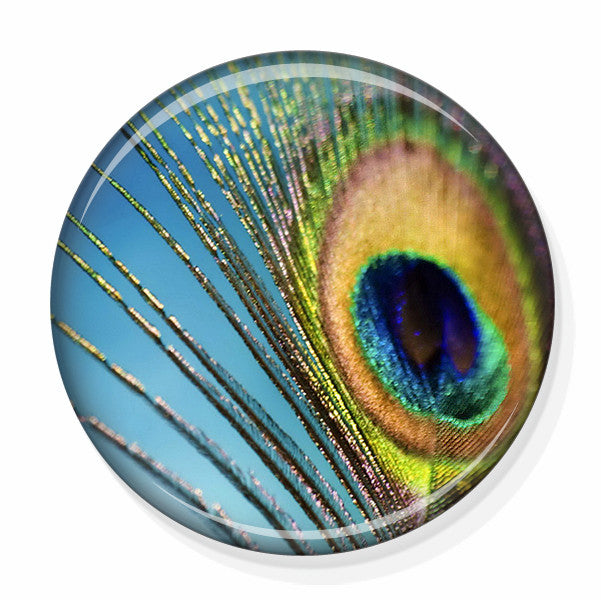 Peacock feather small hand mirror by pretty picture gifts