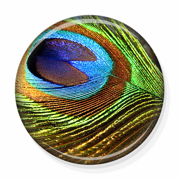Green Peacock Feather Pocket Mirror by Pretty Picture Gifts