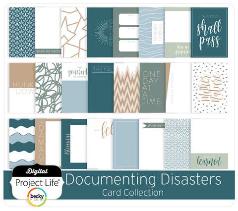 Documenting Disasters Card Collection