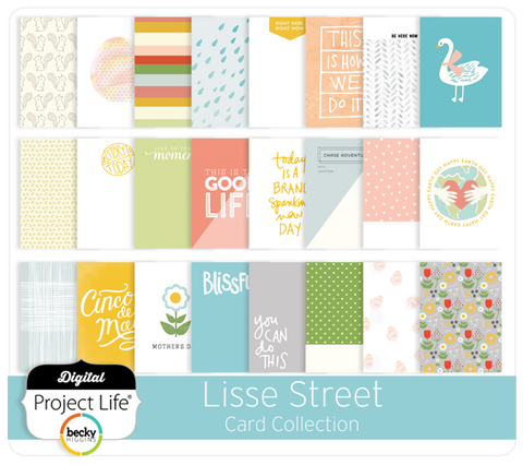 Lisse Street Card Collection