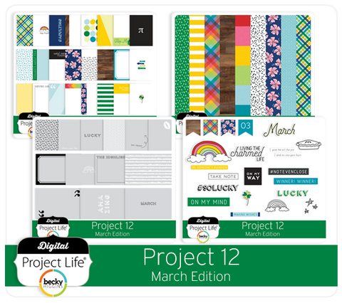 Project 12 March Edition
