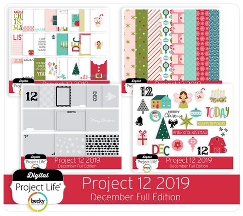 Project 12 2019 December Edition