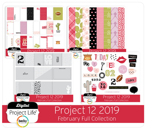 Project 12 2019 February Edition