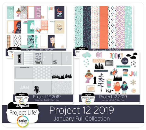 Project 12 2019 January Edition