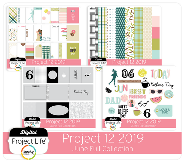 Project 12 2019 June Edition