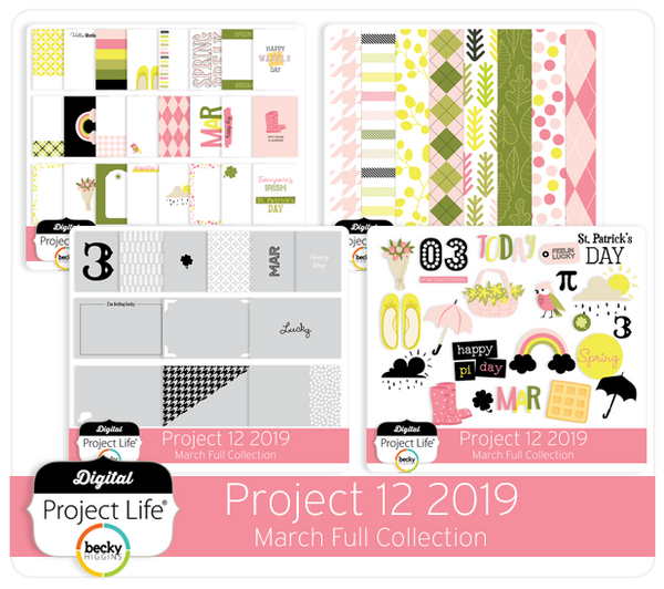 Project 12 2019 March Edition