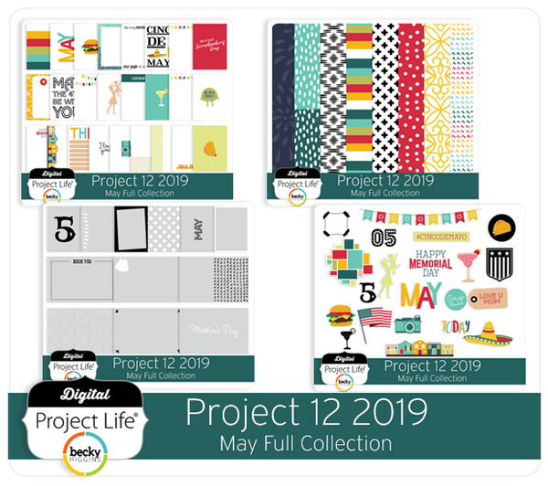 Project 12 2019 May Edition