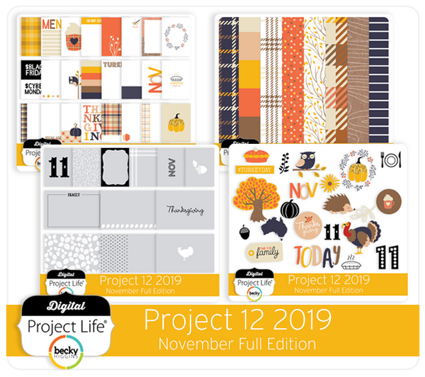 Project 12 2019 November Edition