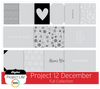 Project 12 December Edition