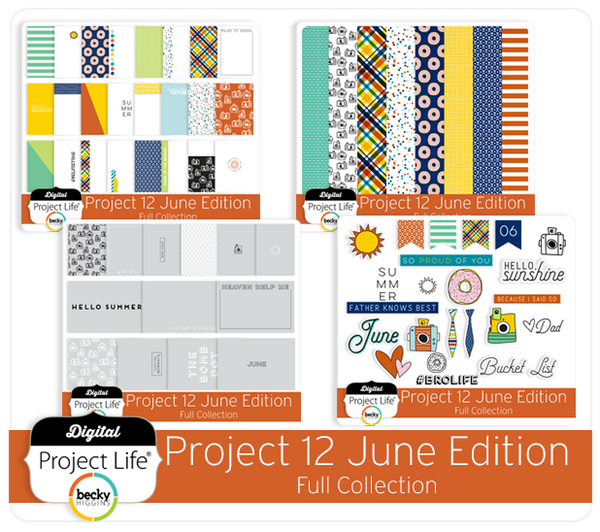 Project 12 June Edition