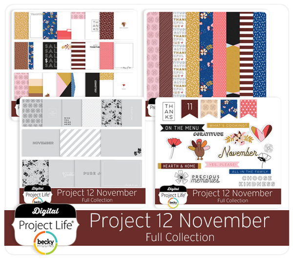 Project 12 November Edition