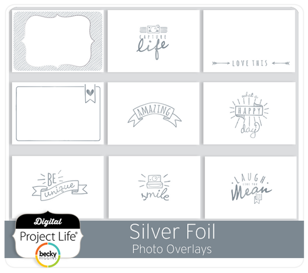Silver Foil Photo Overlays