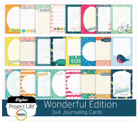 Wonderful Edition 3x4 Journaling Cards