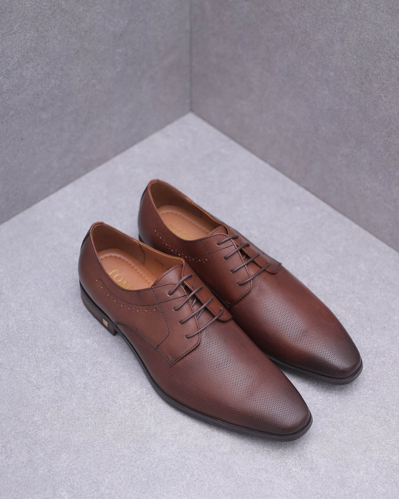 Tomaz F182 Perforated Lace Up Formal (Brown)