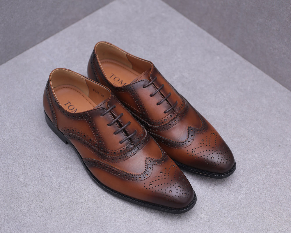 Tomaz F231 Wingtip Brogues Lace Up (Brown)
