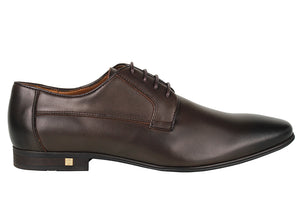 Tomaz F184 Lace Up Formal (Coffee)