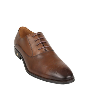 Load image into Gallery viewer, Tomaz F175 Lace Up Formal (Coffee) men shoe, men's shoe, men's italian dress shoes, men's dress shoes guide, men's dress shoes near me, dress shoes men, famous footwear near me, famous footwear locations, shoe store near me, best formal shoes, formal shoes