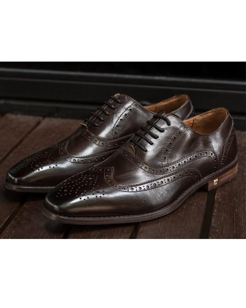 Tomaz F220 Formal Wingtip Oxford (Coffee) (1943002972256)