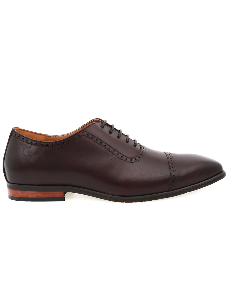 Tomaz F261 Cap Toe Brogue Oxford (Coffee) men shoe, men's shoe, men's italian dress shoes, men's dress shoes, men's dress shoes near me, shoe shop near me, tomaz shoe locations, shoe store near me, formal shoes