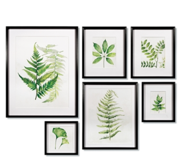 LEAF STUDY WATERCOLOR GALLERY SET OF 6 - IN STORE PICK UP ONLY!