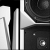 Wilson Audio MAXX 2 Loudspeaker, Factory Tested, Obsidian Black | Pre-Owned & Specials | Paragon Sight & Sound