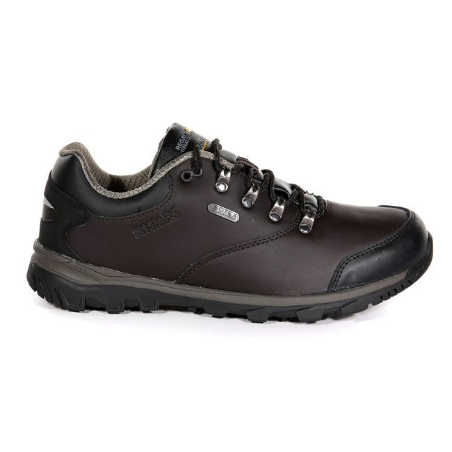 Peat-Treetop - Back - Regatta Mens Kota Leather Low Walking Shoes